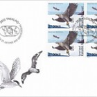 TAAF - Joint Issue - (FDC Block of 4 - 2/2)