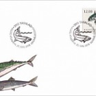Fish in Nordic Waters 2018 - (FDC Single Stamp - Mackerel)