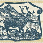 Vieux Billets de Banque Groenlandais II