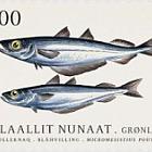 鱼在格陵兰岛II