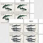 Fish in Nordic Waters 2018 - Block of 4 Upper Marginal