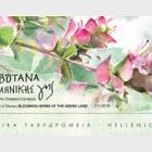 Flowering Herbs of the Greek earth