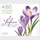 Flora Croate - Fleurs de printemps