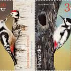 克罗地亚 - 吉尔吉斯斯坦联合问题 - 受保护鸟类