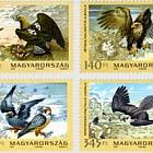 The Fauna of Hungary VI - Birds