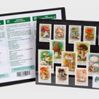 Thematic Stamp Set- Mushrooms