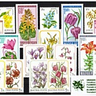 Thematic Stamp Sets- Flowers II