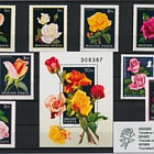Thematic Stamp Sets- Roses