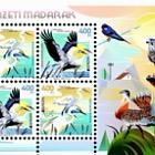 Europa 2019 - Birds
