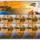 Rivers in Israel - Zin River
