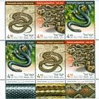 Snakes in Israel - (Tab Block)