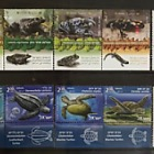 Thematic Pack - Animals Amphibians Collection