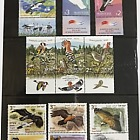 Thematic Pack - Birds Collection