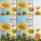 Spring Flowers - (Chrysanthemum Coronarium) - Tab Block