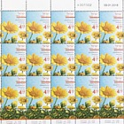 Spring Flowers - (Chrysanthemum Coronarium) - Sheet