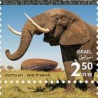 以色列依瑞兹的考古学