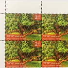 Trees of Israel - Arbutus Andrachne - Plate Block