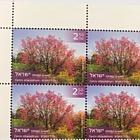 Trees of Israel - Cercis Siliquastrum - Plate Block