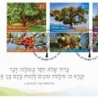 Trees of Israel