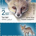 以色列的濒临灭绝的哺乳动物