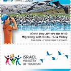 Tourism in Israel - Migrating with Birds
