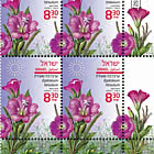 Summer Flowers - Epilobium Hirsutum - Tab Block