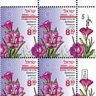 Summer Flowers - Epilobium Hirsutum - Plate Block