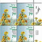 Summer Flowers - Dittrichia Viscosa - Plate Block