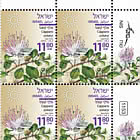 Summer Flowers - Capparis Zoharyi - Plate Block