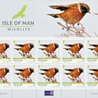 Isle of Man Wildlife - Europa Sheetlet
