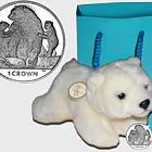 Kermode Bear- (Crown Gift Pack)