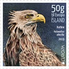 Europa 2019 - Icelandic Birds