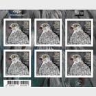 Europa 2019 - Icelandic Birds - Gyrfalcon Sheetlet