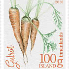 Icelandic Garden Vegetables I - Carrot