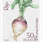 Icelandic Garden Vegetables I - Beet