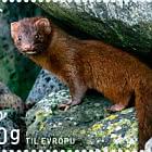 Norden Stamp 2020 – Mammals - Mink