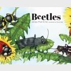 Jersey Post & Go - escarabajos