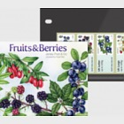 Post & Go - Fruits & Berries