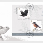 Links with China - Bird Life - (FDC M/S)