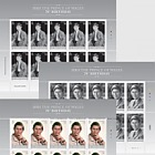 HRH The Prince of Wales 70th Birthday - Sheetlet Set