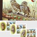 BOOKLET Birds of Prey