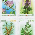 Flora of Kyrgyzstan - Medicinal Plants