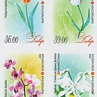 Flora of Kyrgyzstan