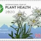 2020 - Année Internationale De La Santé Des Végétaux (Onu)