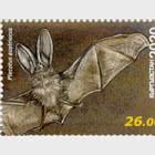 Fauna de Kirguistán - Murciélagos