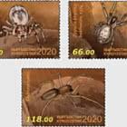Fauna del Kirghizistan - Ragni