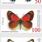 Butterflies of Kyrgyzstan - (Set Mint)