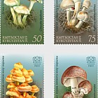 Poisonous Mushrooms of Kyrgyzstan - Set Mint