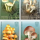 Poisonous Mushrooms of Kyrgyzstan - Set CTO