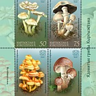 Poisonous Mushrooms of Kyrgyzstan - M/S Mint